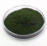 Salvia Divinorum (40x Extrakt) 1g
