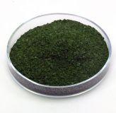 Salvia Divinorum (60x Extrakt) 1g