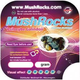 Mushrocks (Psilocybe Galindoii)