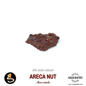 Areca Nut 30x Resin Extract
