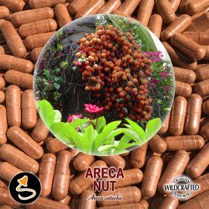 Areca Nut - Arekanuss 25 Kapseln