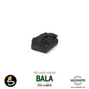 Bala Sida Corifolia 30x Resin Extract