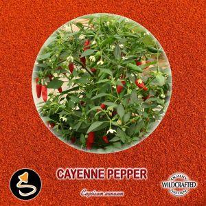 Cayenne Pepper - Cayennepfeffer Pulver 10g
