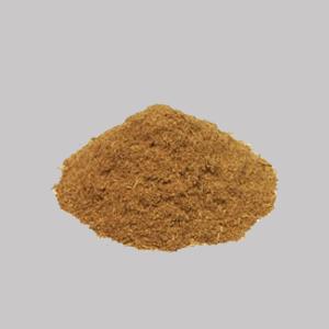 Tynathus panurensis (clavo huasca) 100g