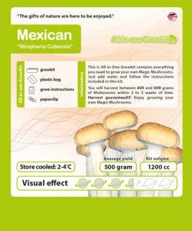 2 x Growbox Mexican