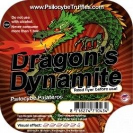 Dragon's Dynamite (Psilocybe Pajateros)