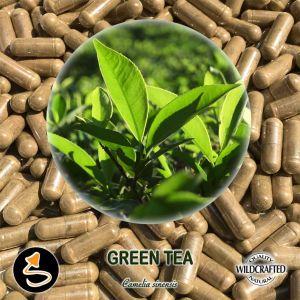 Green Tea - Grüner Tee 25 Kapseln