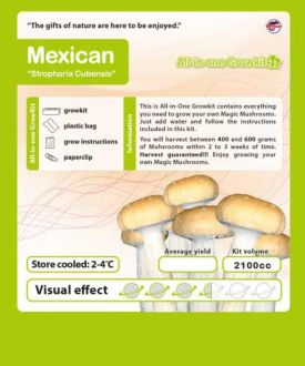 Growbox Mexican 2100cc
