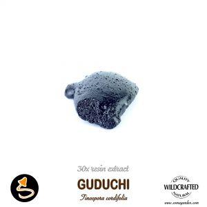 Guduchi Tinospora Cordifolia 30x Resin Extract