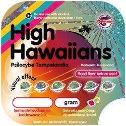 High Hawaiians (Psilocybe Tampelandia)