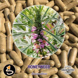 Honey Weed - Honigkraut 25 Kapseln