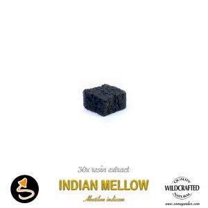 Indian Mellow (Abutilon Indicum) 30x Resin Extract