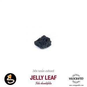 Jelly Leaf (Sida Rhombifolia) 30x Resin Extract