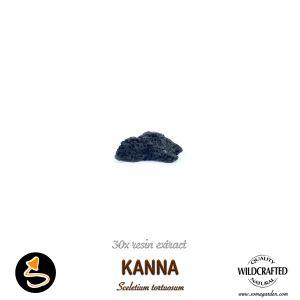 Kanna (Sceletium Tortuosum) 30x Resin Extract
