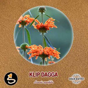 Klip Dagga - Löwenohr Pulver 10g