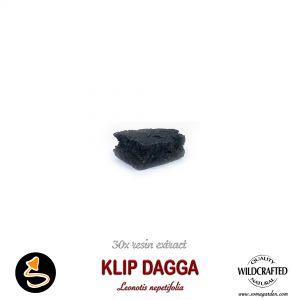 Klip Dagga (Leonotis Nepetifolia) 30x Resin Extract