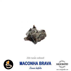 Maconha Brava (Zornia Latifolia) 30x Resin Extract