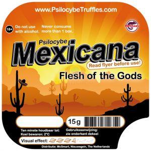 Mexicana (Psilocybe Mexicana)