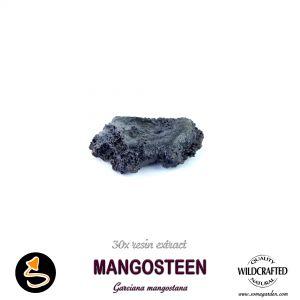 Mangosteen (Garciana Mangostana)