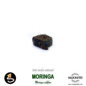 Moringa (Oelifera) 30x Resin Extract