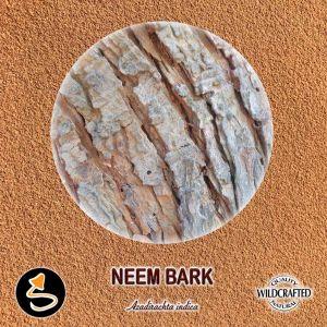 Neem - Niembaum Pulver 10g