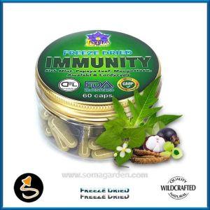 Immunity (Mix aus 5 Pflanzen) Kapseln