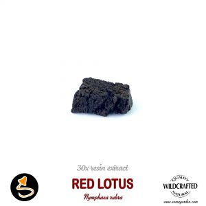 Red Lotus (Nymphaea Rubra) 30x Resin Extract