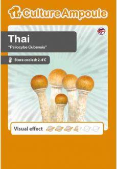 Thai Culture Ampoule