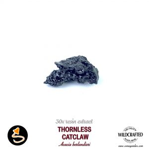 Thornless Catclaw (Acacia Berlandieri) 30x Resin Extract