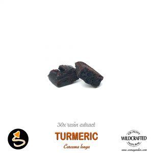 Turmeric (Curcuma Longa) 30x Resin Extract