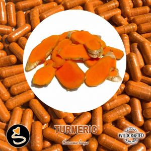 Turmeric - Gelbwurz 25 Kapseln
