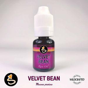 Velvet Bean - Juckbohne Resin Oil