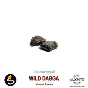 Wild Dagga (Leonotis Leonurus) 30x Resin Extract