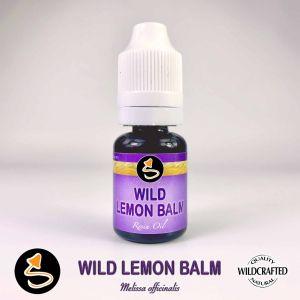 Wild Lemon Balm - Zitronenmelisse Resin Oil
