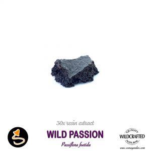 Wild Passion (Passiflora Foetida) 30x Resin Extract