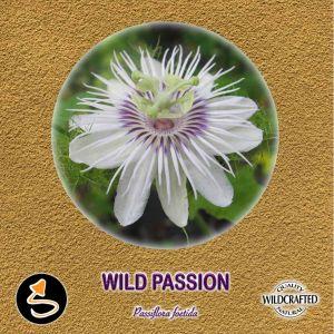 Wild Passion - Passionsblume Pulver 10g